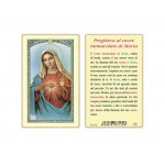 SANTINO PLASTIFICATO CUORE IMMACOLATO MARIA (CONF. 25 Pz)