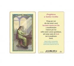 CARD PLASTIFICATA MADONNA MIRACOLOSA CON MEDAGLIA (CONF. 5 Pz)